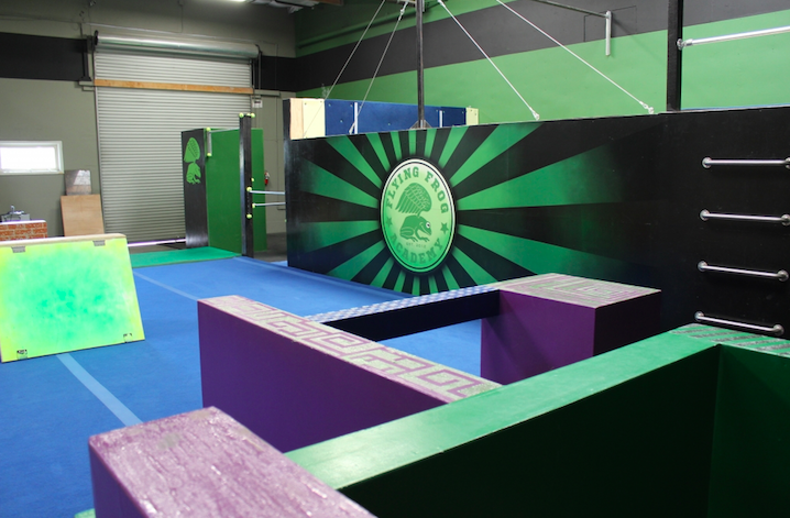 Welcome To The Flying Frog Freerunning Academy